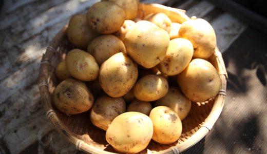 ★簡単うまい★ジャガイモのとろとろ温玉のせレシピ